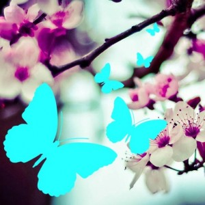 cropped-rula-sibai-pink-flowers21.jpg